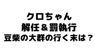 クロちゃん解任&罰執行 豆柴の大群にカエデ加入!水ダウ モンスターアイドル今現在