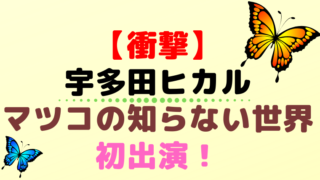 宇多田ヒカル テレビで曲披露か?!新年あなたへ送る「マツコの知らない世界SP」